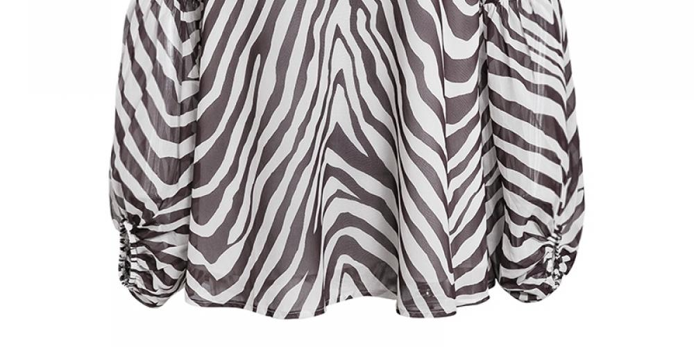 Classic Zebra Stripe Printed Blouse #model #cool