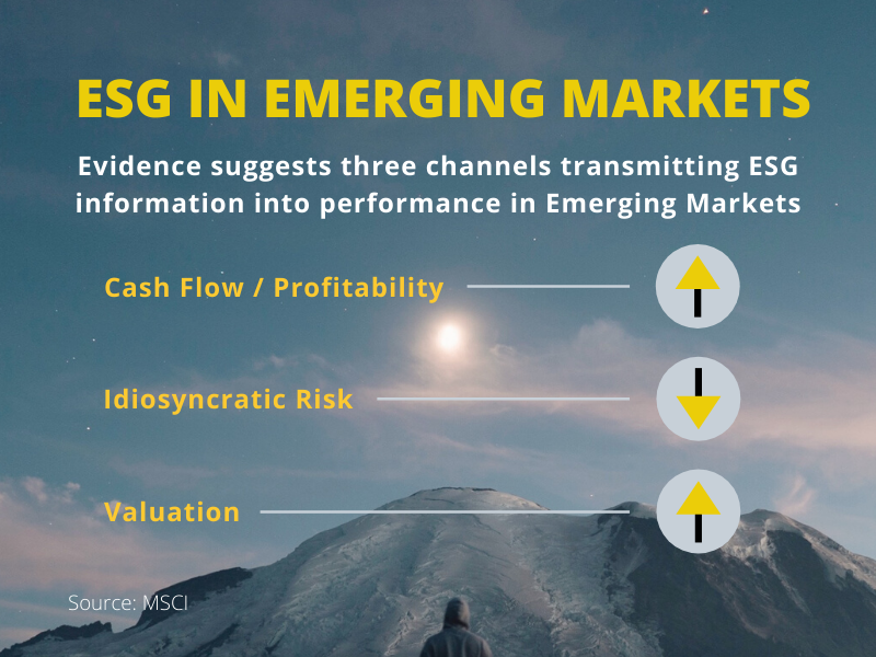 Integration of #ESG in #EmergingMarkets provides a financial benefit both from flagging for inclusion companies that were better positioned for future success, as well as excluding companies with poorer prospects #ResponsibleFinance http://ow.ly/qglB50ytrMupic.twitter.com/PVVShaHlUE