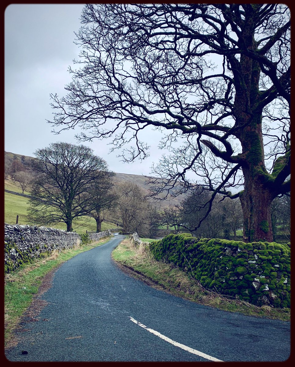 Walking in Upper Wharfedale yesterday, close to the village of Arncliffe in the #Yorkshire Dales during a break in the rain.  #YorkshireDales #nature #trees #photography #walkingpic.twitter.com/lbqVgAr0aD