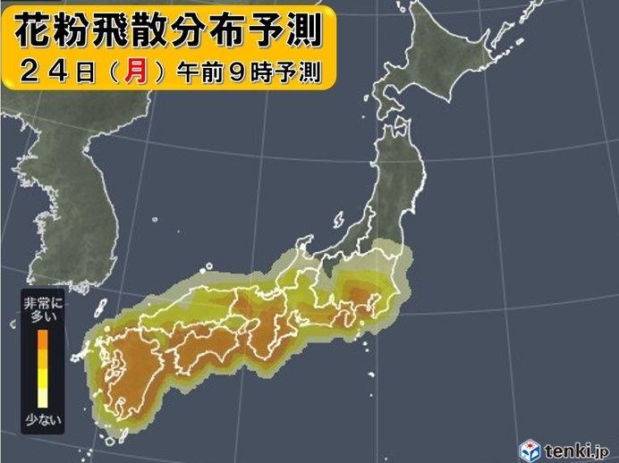 福岡から東京にかけてはつらい時期にスギ花粉 そろそろ飛散ピーク突入か