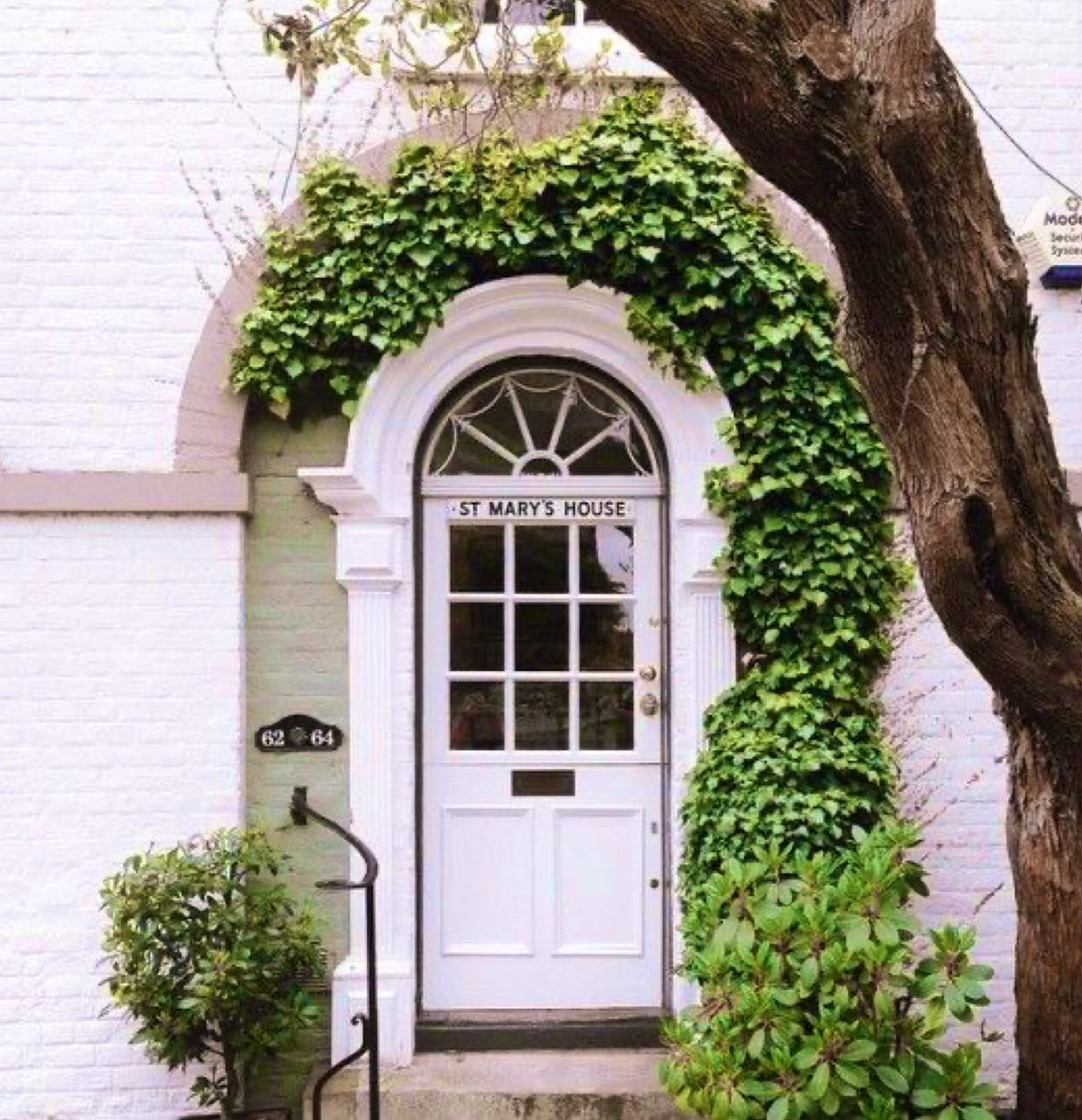 🏡🌿🍃🌿🍃🌿🏡 🚪@screenise(#UK🇬🇧) 🚪@Havenlust(Fitzwilliam Square #Dublin #Ireland🇮🇪) 🚪@Suchada60157220 🚪@moraimauy(#NYC #USA🇺🇸) #architecture #PlantATree #plants #tree #Green #door #window #Buildings #design #ideas #creative #nature #photograghy #beautiful #awesome #cool