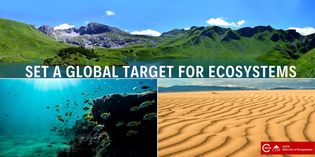 Next preparation meeting of the Convention on Biological Diversity can be the moment to set a global target for ecosystems in their discussions. Nations have a chance to ensure that remaining intact #ecosystems are retained by 2030. 👉go.nature.com/39T4YqH @UNBiodiversity @IUCN