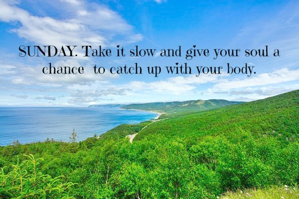 #SundayThoughts #clearthemind #analyzeyourthoughts #knowyourbase #replacenegativity #starttoday #relax #innerstrength #powerfulmindset #chooseyourstorynow #justyouandyourself #intentions #ATTENTION #vision pic.twitter.com/ibLUynR5H8