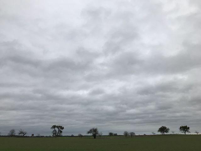Herzfelder Weg bei Boitzenburg War dann leider doch sehr nass heute. #Uckermark #Uckermark_erleben #Instagram https://ift.tt/39Xeysxpic.twitter.com/p0VFhl5le0