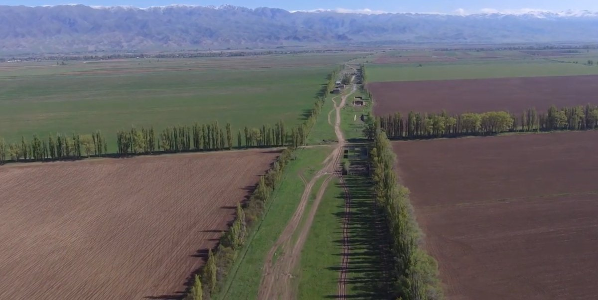 #MediaRelease| Small plot-sizes as well as lack of information and external support are the main obstacles to the adoption of the agroforestry practice of tree shelterbelts in #Kyrgyzstan: http://bit.ly/2SGT1yD @hneeberswalde @CIFOR @ICRAF_Indonesia