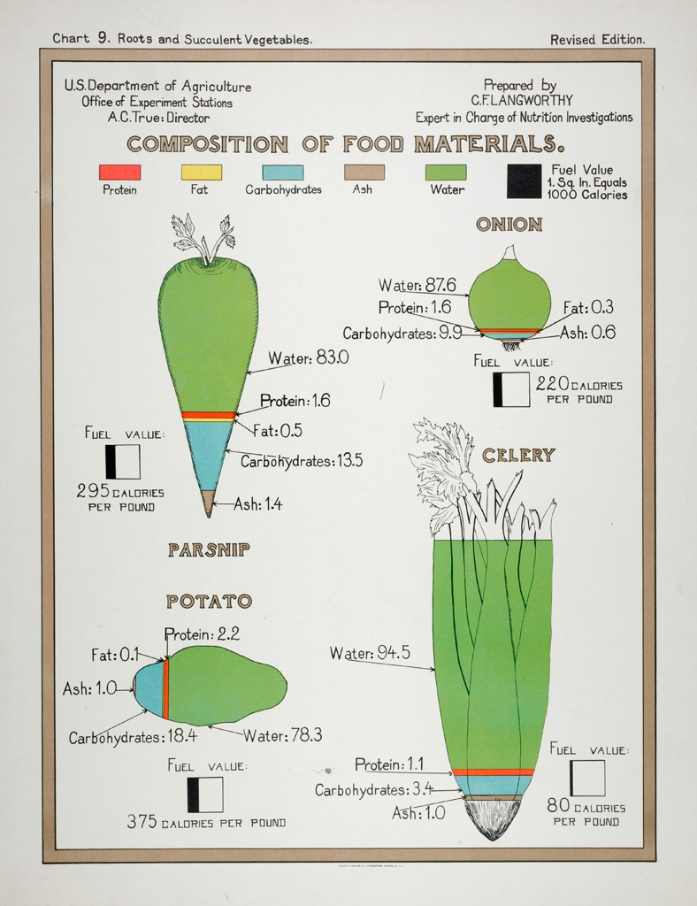 Health: United States: U.S. Department of Agriculture, Composition of Food Materials: Chart 9. Roots and Succulent Vegetables.: Parsnip. Onion. Potato. Celery Andrew B. Graham Co. Archival Material, Photolithograph American, c. 1903 pic.twitter.com/gnOSjRJyIv