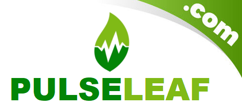 http://PulseLeaf.com  is in #Auction!#selldomain #domain #domains #domainname #domainnames #business #entrepreneur #startup #domainnameforsale #domainforsale #domainer #tld #website #linux #cbd #cannabis #weed #leaf #wellness #cbdlife #cannabisculture #cbdmovement #cbdproducts