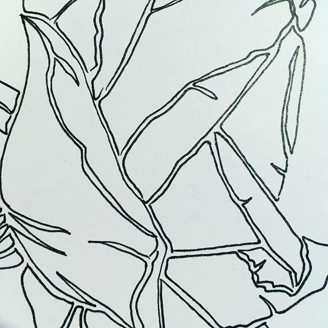 New new new #instadailyapp #instadaily #followme #fashionbloggers #handprinted #coolshit #coolshitonly #coolshitwelike #fashionblog #screenprint #screenprinting #menswear #mensfashion #rock #tshirts #tshirtshop #instagood #follow #like #photooftheday #picoftheday #style #fas…