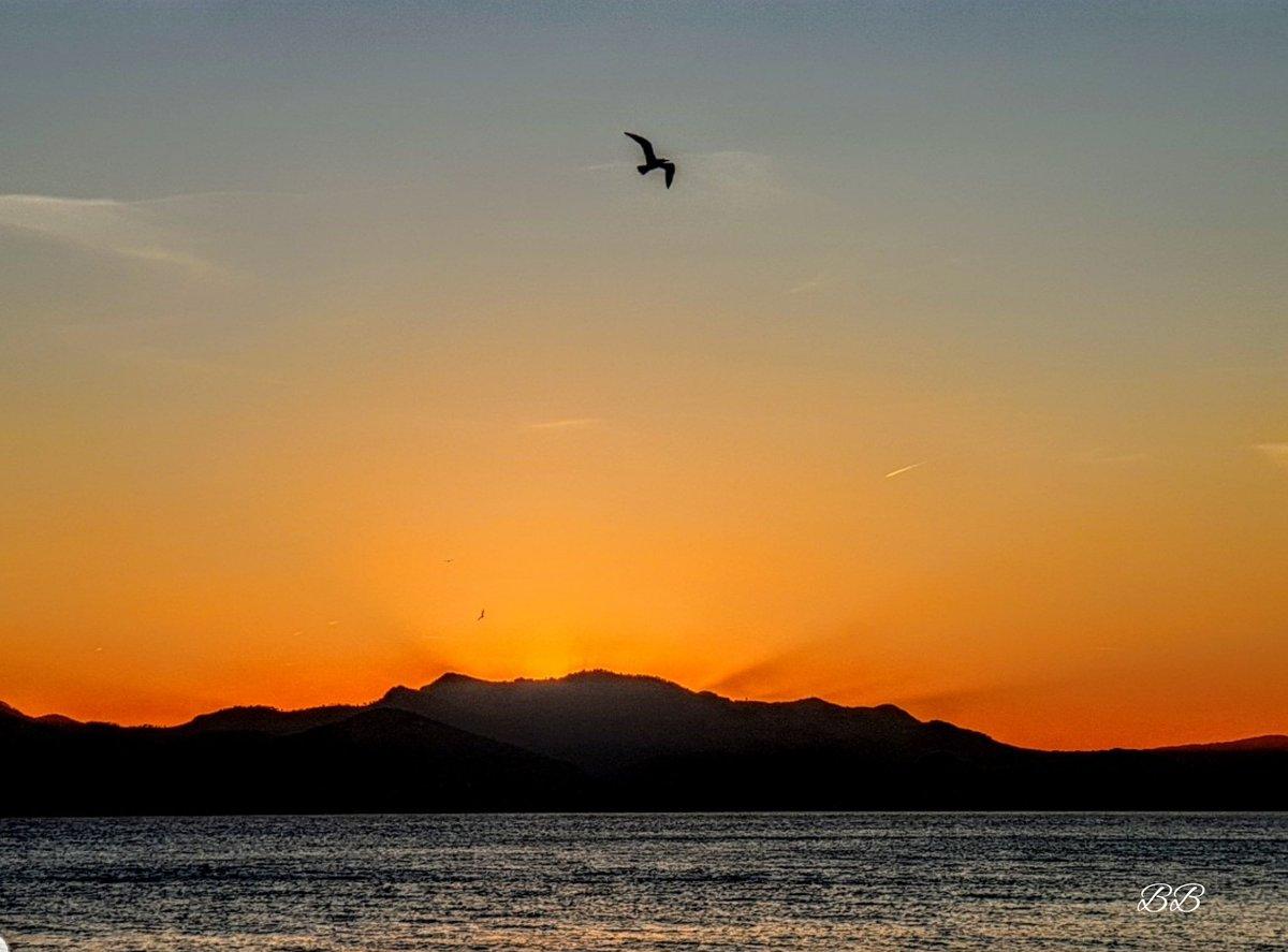 Coucher de soleil sur l'estérel depuis la pointe Croisette. Belle soirée à toutes et à tous 💫 #Cannes @villecannes #Sunset @LouDecannes #CotedAzurFrance #MagnifiqueFrance #FranceMagique