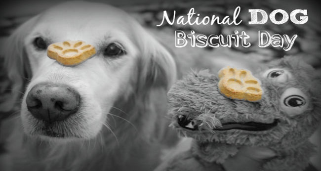 It's National Dog Biscuit Day!  We want to see your cute dog pictures today, so send them our way!   #DogBiscuitDay #dogs #bookstuff #books #reading #kindle #dogpictures