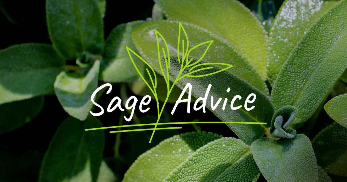 The herb sage is associated with improving memory. Research has indicated that people who take sage oil capsules before tests perform better than those who take a placebo.   #life #love #homesweethome #home #family #garden #flowers #ideas #happylife #inspiration #health