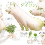 【野菜が愛おしくなりそう】野菜や鳥をモチーフにした動物たちの図鑑が可愛すぎる