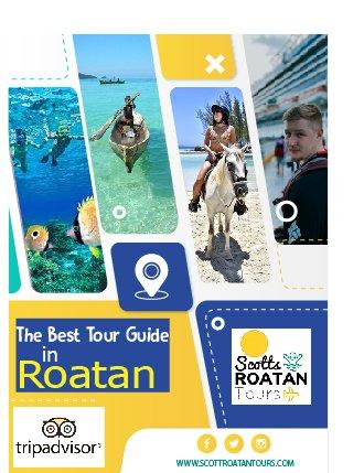 https://www.scottroatantours.com/ . #tourisme#tourismireland#tourismepaca#tourismbc#tourismeoccitanie#tourismnsw#tourismus#tourismaustralia#Tourismthailand#tourismmalaysia#tourismphilippines#tourismvictoria#tourismo pic.twitter.com/z3schHFBLV
