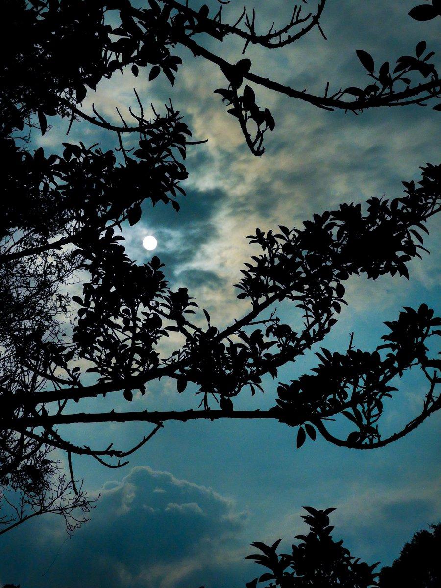 El vacío rebosa de fantasmas dormidos #sunset