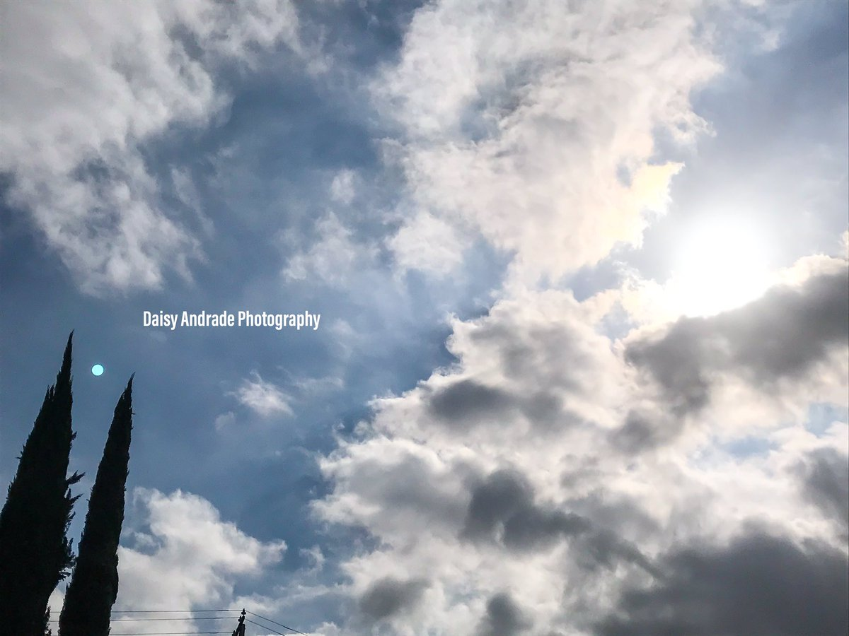#daisyandradephotography #city #shadows #photographylovers #instapic #photo #photographylife #travelphotography #colorful #California #view #Beautiful #nature #trees #photographer #magazine #outdooradventure #trendy #abc7eyewitness #vistala #naturephotography #photographyeveryday