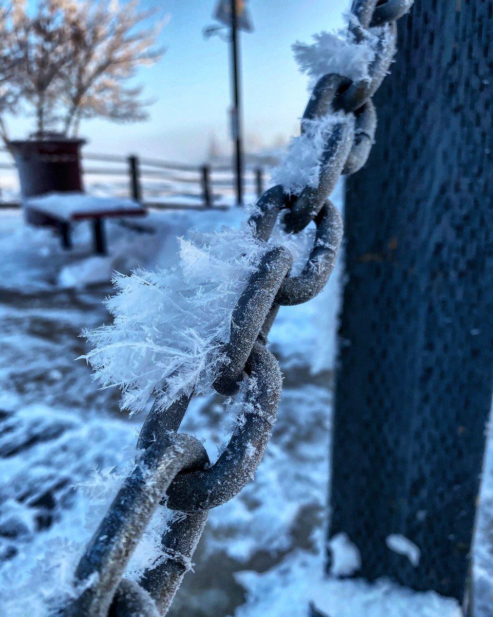 #HoarFrost #nature #Winter #HobbyPhotography #amateurphotographypic.twitter.com/fLCzLy6wwW