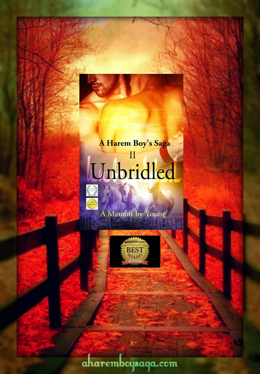 Losing yourself in new surroundings is the best way to find yourself. UNBRIDLED http://myBook.to/UNBRIDLED is the sequel to a sensually illuminating true story about a young man coming-of-age in a secret society & a male harem. #RRBC #RWISA_Communitypic.twitter.com/l9u5EkOhpx