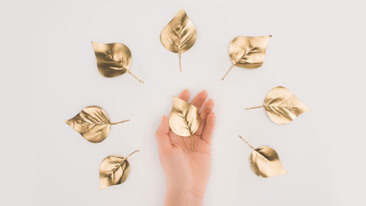 Für Nutzer des Woodpeckershops steht ein neues Bonus-Angebot bereit. Die Kunden können sich für eine Prämie entscheiden oder in die Zukunft investieren…  https://www.schreinerzeitung.ch/de/artikel/mehr-als-nur-holz-online-kaufen…  #Woodpacker #WoodpeckerHoldingAG #Woodpeckershop #Prämie #Bonus #Bonuspunkte #Blattgoldpic.twitter.com/6cr7IdM9BI