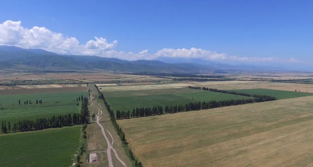 #Publication| Farmers' Perceptions of Tree Shelterbelts on Agricultural Land in Rural #Kyrgyzstan: http://bit.ly/38UBQ2i @hneeberswalde @CIFOR