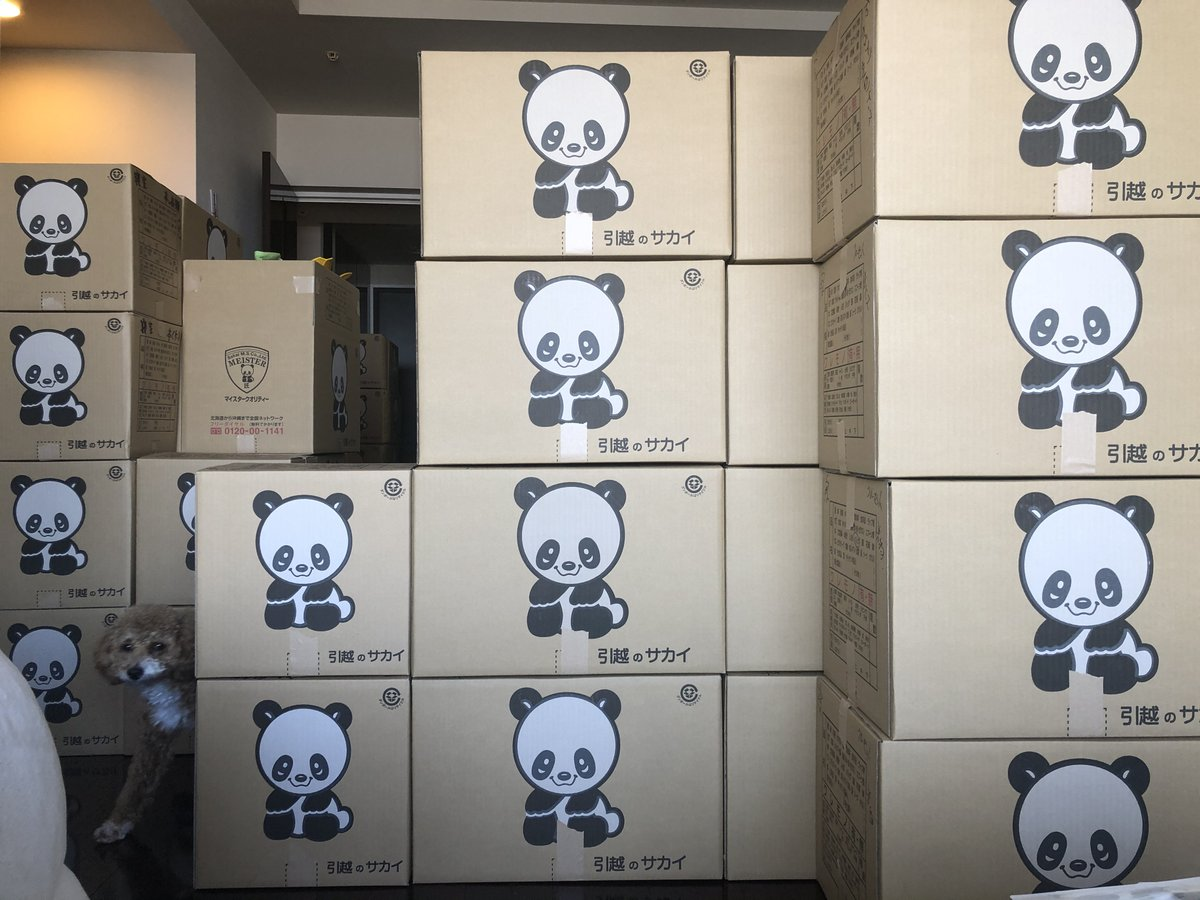 引越しの梱包サービス使ったら数時間で全ての物がダンボールに変わって本当助かったんだけどどこ見渡してもパンダが見てきて普通に気が狂いそうになる。
