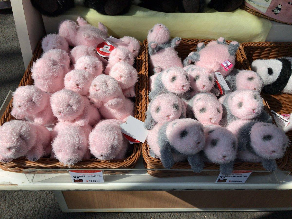 そういえば上野動物園の売店の「ほんとの大きさパンダの仔」の在庫が潤沢でした