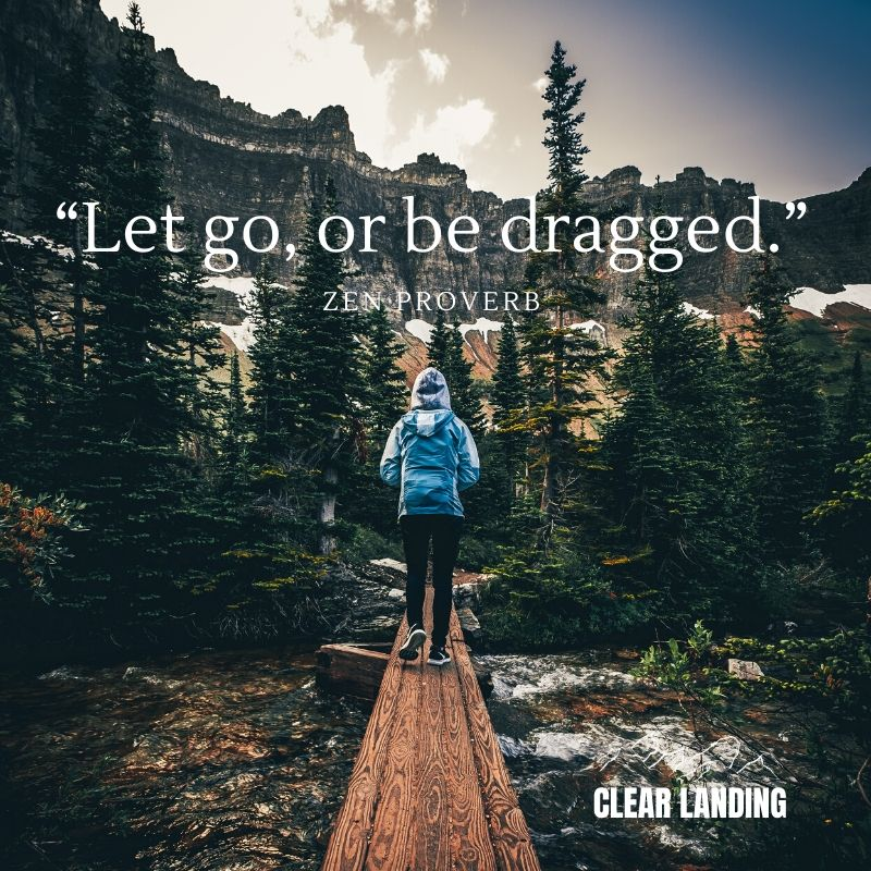 Let go, or be dragged. Zen Proverb  #nature #life #meme