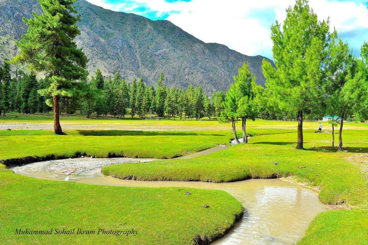 Beautiful Rama Meadows, Astore. @Scheherzadeh @ihameed123 @FaezaDawood @javerias @nadia_a_mirza @noshigilani @hsntalal_tiwana @Abbrar @AbbassShah @AstoreGB @Gilgittheheaven @ZahranCR