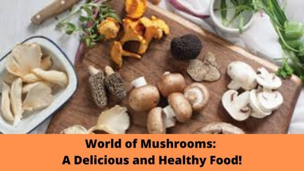 World of Mushrooms: A Delicious and HealthyFood! https://herbsstory.com/world-of-mushrooms-a-delicious-and-healthy-food/…pic.twitter.com/Cb3R8L5tl2