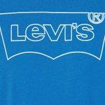 Image for the Tweet beginning: Men's Levi's Housemark Graphic Tee