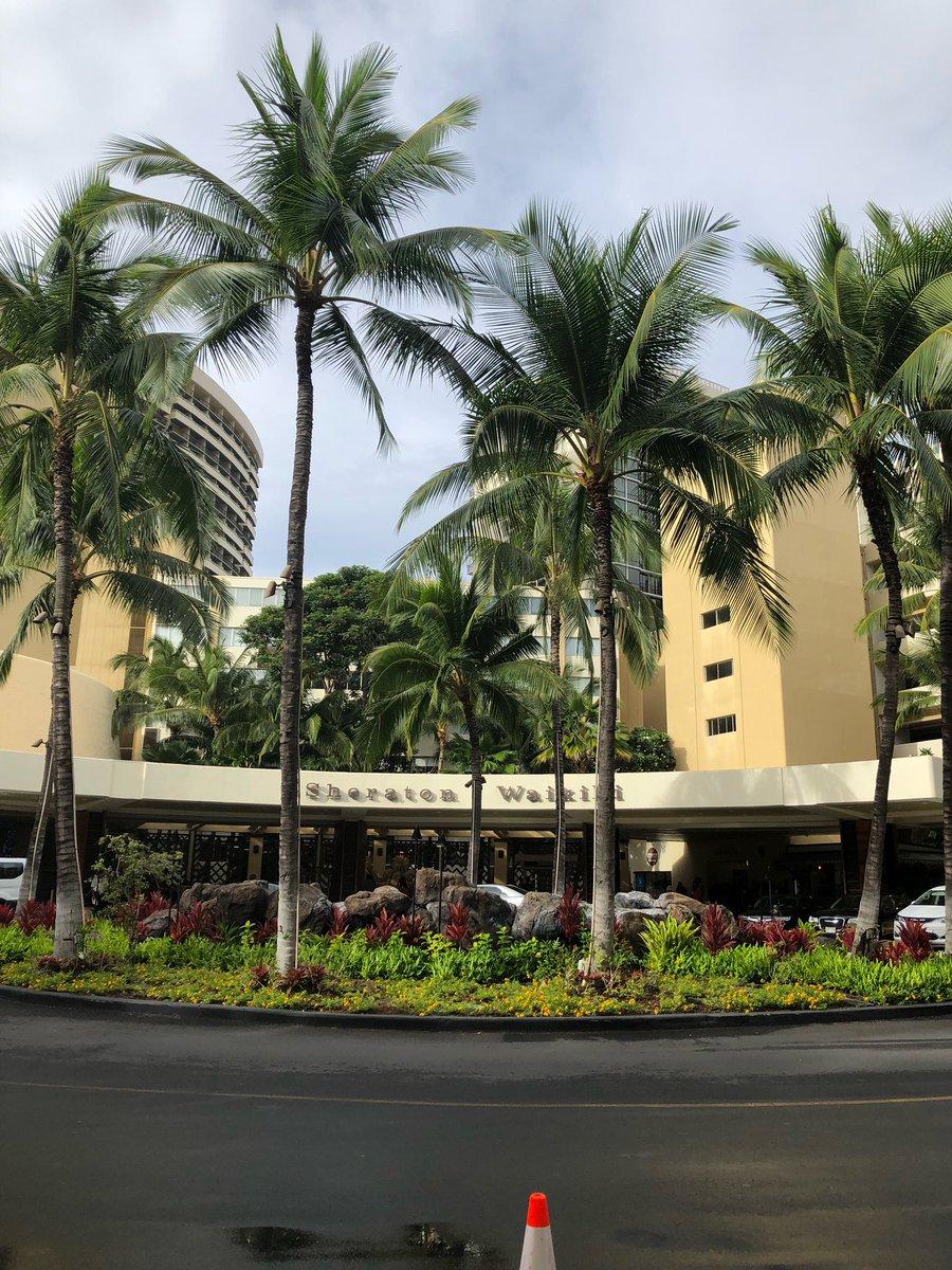 シェラトンワイキキ。 #シェラトンワイキキ #ワイキキ #ホテル #オアフ島 #ホノルル #ハワイ #like4like #フォロー歓迎 #followme #follow #selfie  #friends  #travel #photography #photo  #旅行好き #旅行好きな人とつながりたい