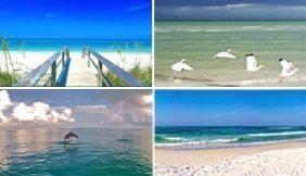 . - 𝗚𝘂𝗹𝗳 𝗦𝗵𝗼𝗿𝗲𝘀 𝗛𝗼𝗺𝗲 𝗦𝗮𝗹𝗲𝘀 & 𝗩𝗮𝗰𝗮𝘁𝗶𝗼𝗻 𝗥𝗲𝗻𝘁𝗮𝗹𝘀   #GulfShores #Beach #Condo #RealEstate