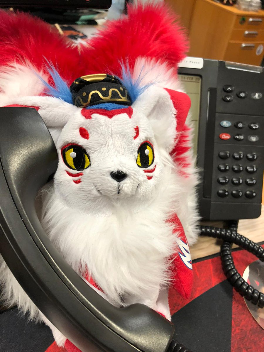 It's a busy day at the KTE office! Thankfully our resident Tenko has offered to help out 👀 #KTfamily