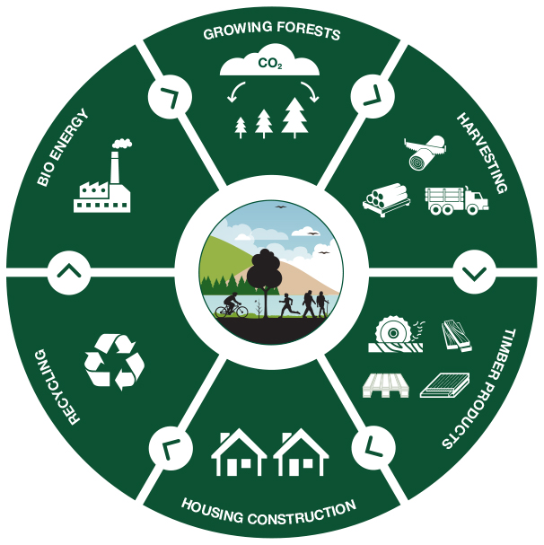 We have a great opportunity in Ireland to build more with timber. Government can take a lead by building schools and civic buildings from timber, which locks away carbon.   Read more in our manifesto on our website: https://bit.ly/2VeKt3H  #climate #forestry #timber