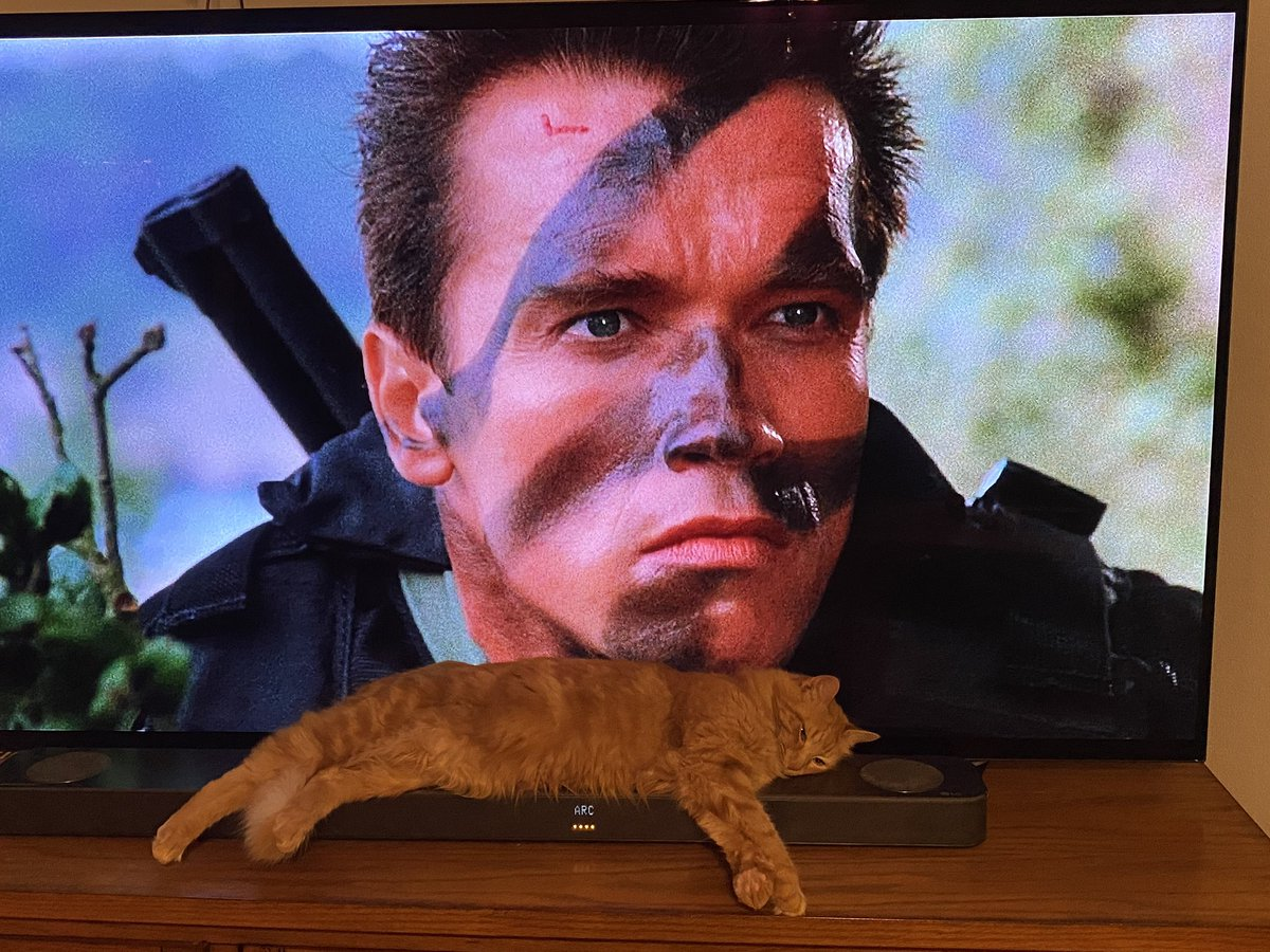 Commando (1985) First viewing  #LauraLovesMovies  Nothing says romance like Arnold blowing some stuff up! #happyvalentinesday #commando #arnoldschwarzenegger #80smovies
