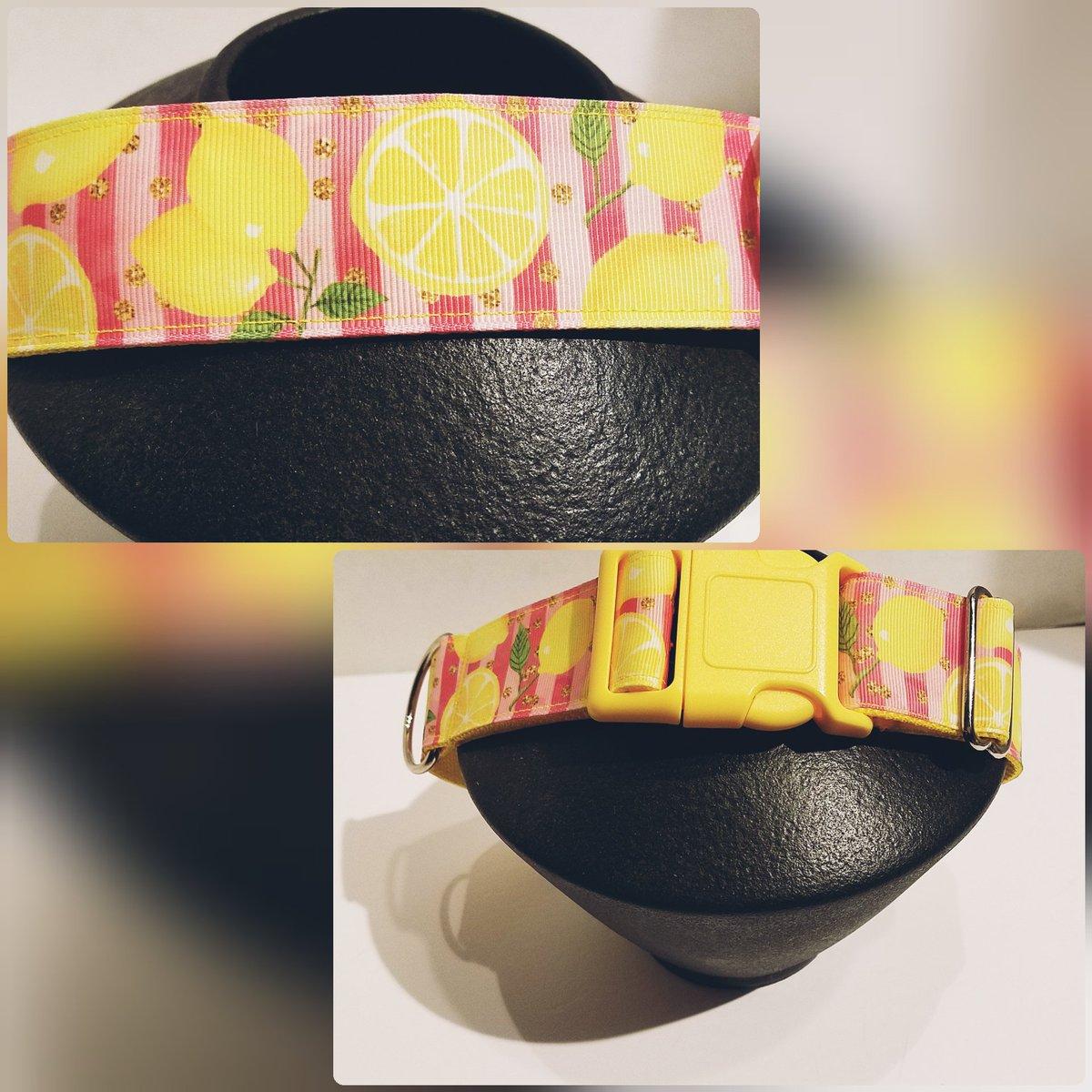 What a fun #Lemon #Dog collar!! 🍋#dogs #fruits #etsypreneur #epiconetsy #craftshout #MondayMorning #mondaythoughts #womeninbiz
