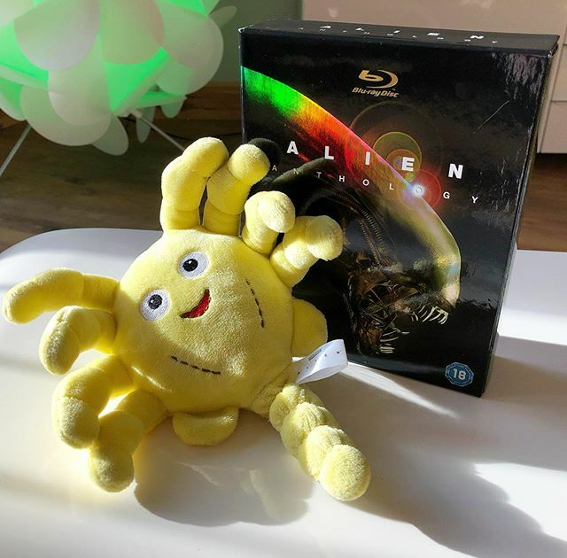 Cool little pick up today. Lootcrate exclusive Kidrobot Phunny Alien facehugger, 2015. €1! #alien #kidrobot #phunny #facehugger #bluray #lifx #movies #scifi #horror #horrorfilm #cute #plush #collector #collection #todayspickup https://ift.tt/2uqJvX7pic.twitter.com/3V0T5gbdXi