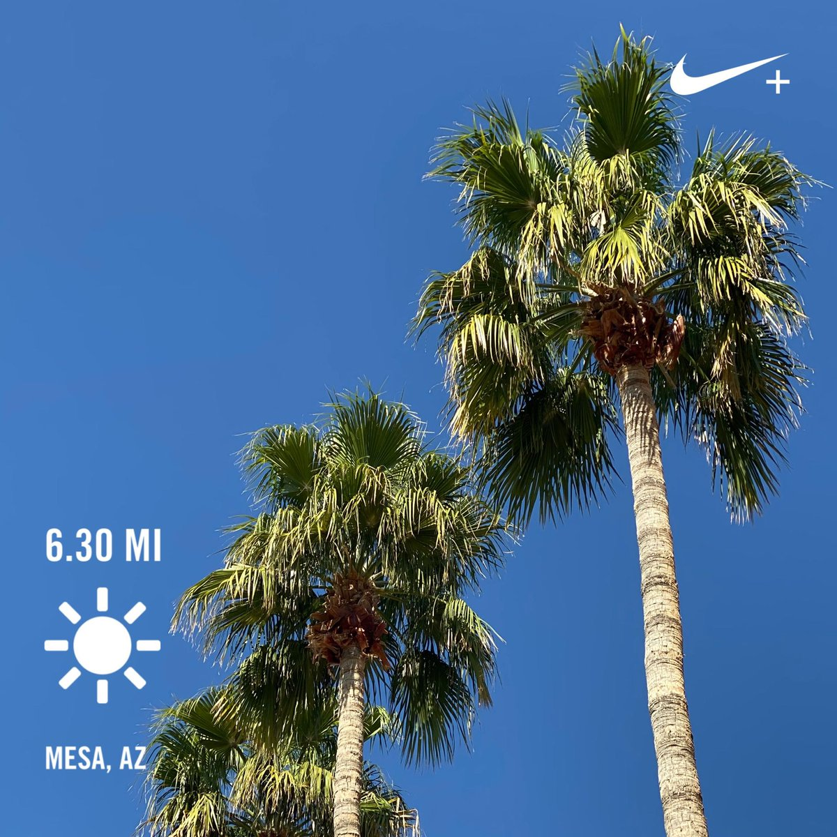 And I ask myself again... why do I live in WI? #sun #run #happyplace 🏃🏻‍♀️☀️🌴