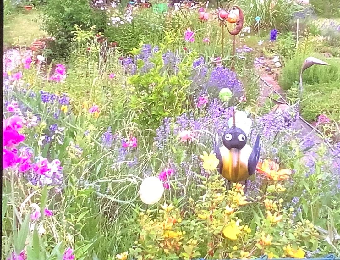 Stimmt. Wir haben in unserem Garten niemals #Gift #Pflanzenschutzmittel (welch absurde Bezeichnung) oder sonstiges benutzt. https://twitter.com/EsLebeDieBiene/status/1231901775961186306…pic.twitter.com/Jlj3ZaL711