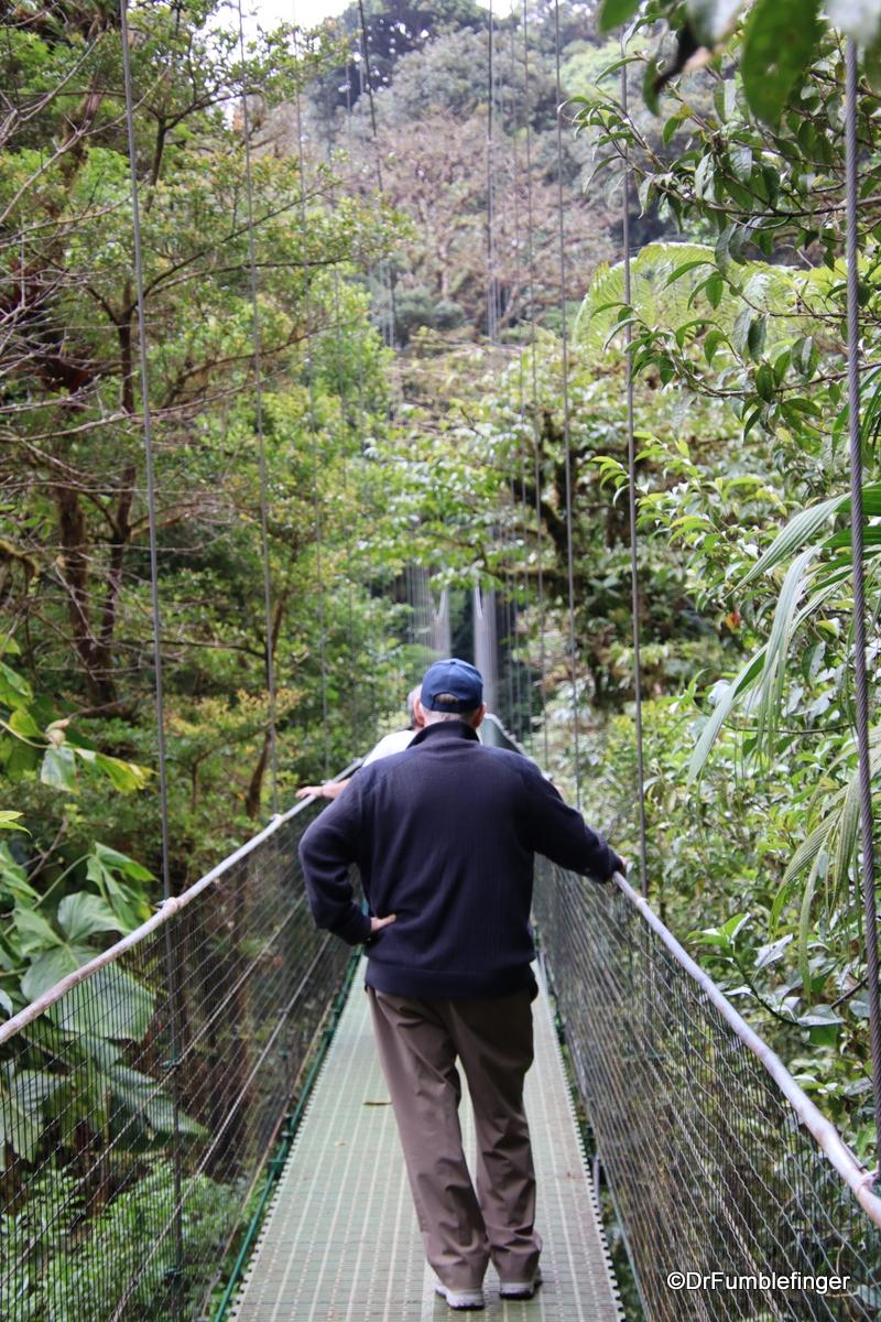 #GumboontheGo!  #Hanging #bridges in #Monteverde #CostaRica.  #cloudforest #jungle #ttot.  https://www.travelgumbo.com/clip/crossing-one-of-the-hanging-bridges-in-monteverd…pic.twitter.com/MoGCKiWeyA