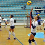 Image for the Tweet beginning: Volley, l'Albaverde ritorna in campo