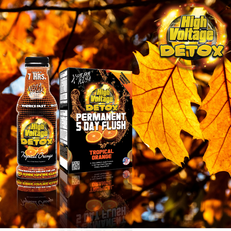 Fall into High Voltage Detox. See us at Champs booth#1136. https://bit.ly/hv-internet-special …  #ToxinFree #Detox #BodyBuilding #Yoga #Pilates #Workout #WorkoutPlan #Health #Healthier #Diet #Exercise #Crossfit #Strengthtraining #Champs2020 #SmokeShop #VapeShop #HeadShop #ASDShow #MadMondayspic.twitter.com/RmCZA20xA0