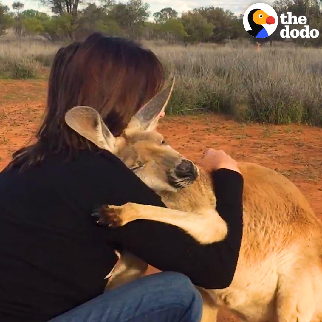 Animals make the world magic 💫💫💫
