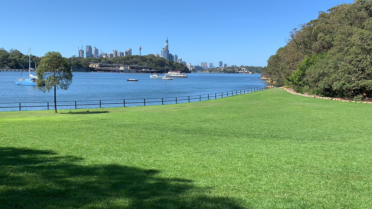 New office location today. Hope the client likes. #coaching #personaltrainer #personaltraining #pt #strengthtraining #strength #leanmuscle #fitter #fit #fitness #lift #beautiful #views #sydney #berryisland #willostrengthandfitnesspic.twitter.com/2TSf0JPhgQ