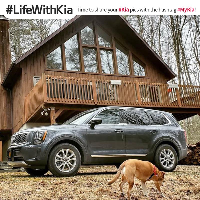 Beastie bestie. #LifeWithKia #Telluride <Photo courtesy of Instagram user @ scotbklyn>