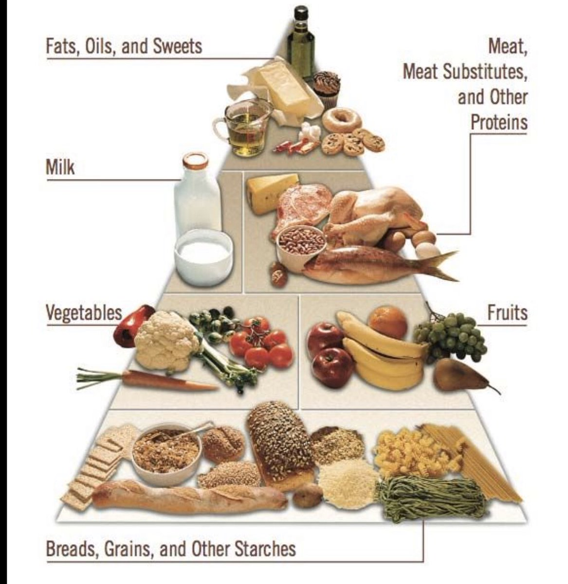 The 2019 Diabetes Foundation Food Pyramid. This is showing how to get Diabetes right?