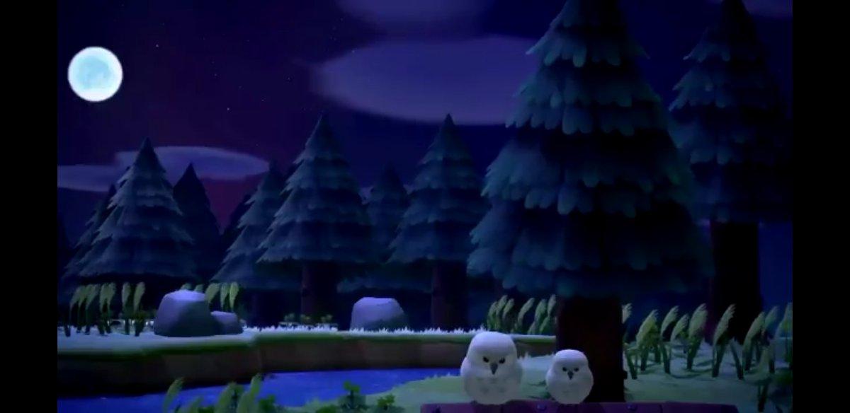 捕まえる ふくろう あつ 森 あつ森フクロウ捕まえる捕獲方法は?捕まえ方には秘密があった!?