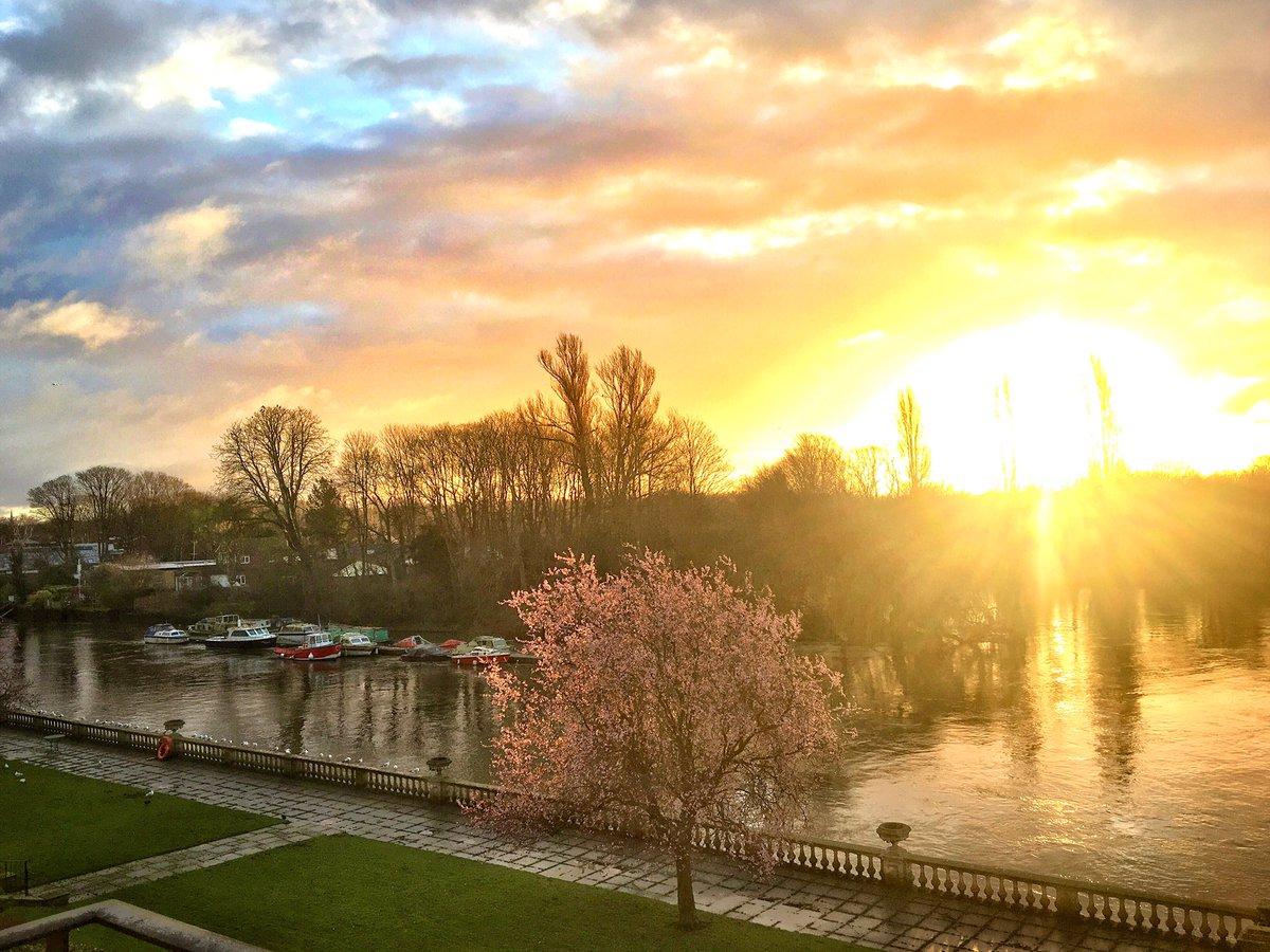 A stunning golden sunrise at Twickenham 25/02/20 @StormHour #StormHour #POTW