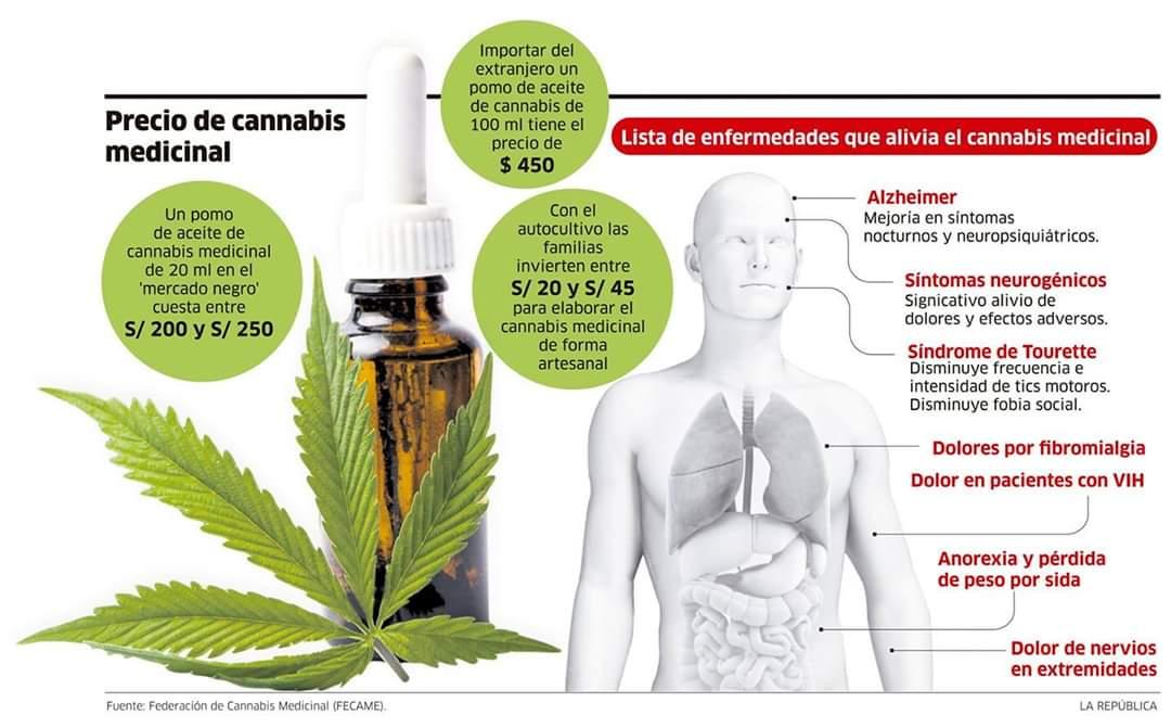 Aceite de cannabis CBD ¡Unete a nuestro Equipo de distribuidores/as! También puedes realizar tu comprar de aceite CBD, mas información WhatsApp: +34 606131605 o https://ctfospain.webnode.es #instagram #twitter #facebook #youtube #linkedin #pinterest #google #yahoo #bing #messenger