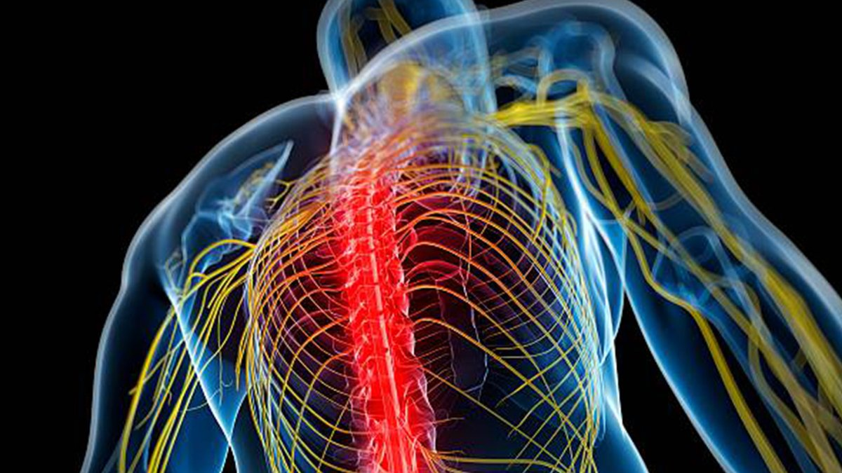 #Painmanagement  #Painmanagement, #painmedicine, #paincontrol or #algiatry, is a branch of medicine employing an interdisciplinary approach for easing the #suffering and #improving the #quality #of #life of those living with #chronic #pain  Book your slot: