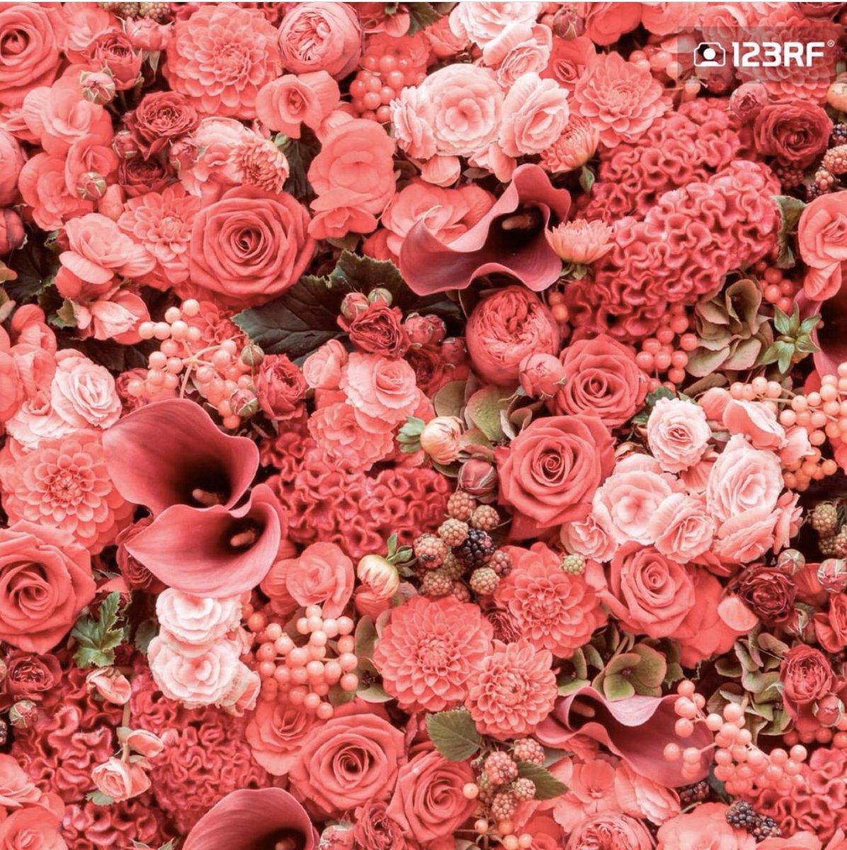 Daha fazlası için 123RF!  #vektor #fotograf #illustrasyon #video #muzik #grafiktasarim #grafiker #webtasarim #webdizayn #cizim #vektorelcizim #gorsel #imaj #lisanslifotograf #yuksekcozunurluk #reklam #reklamtasarim #tanitim #dizayn #yaraticitasarim #yaraticiekip #creativecozumler